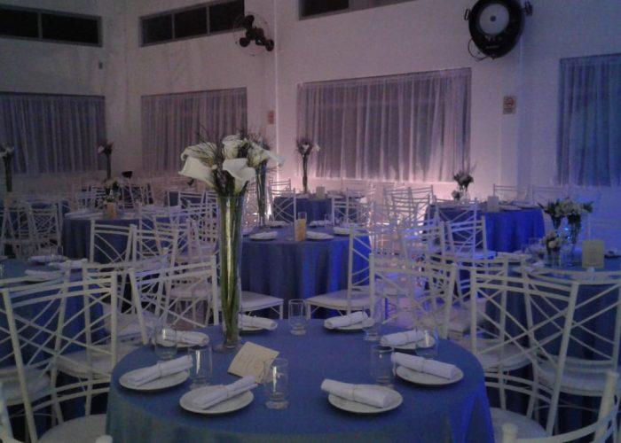 Azul hortensia